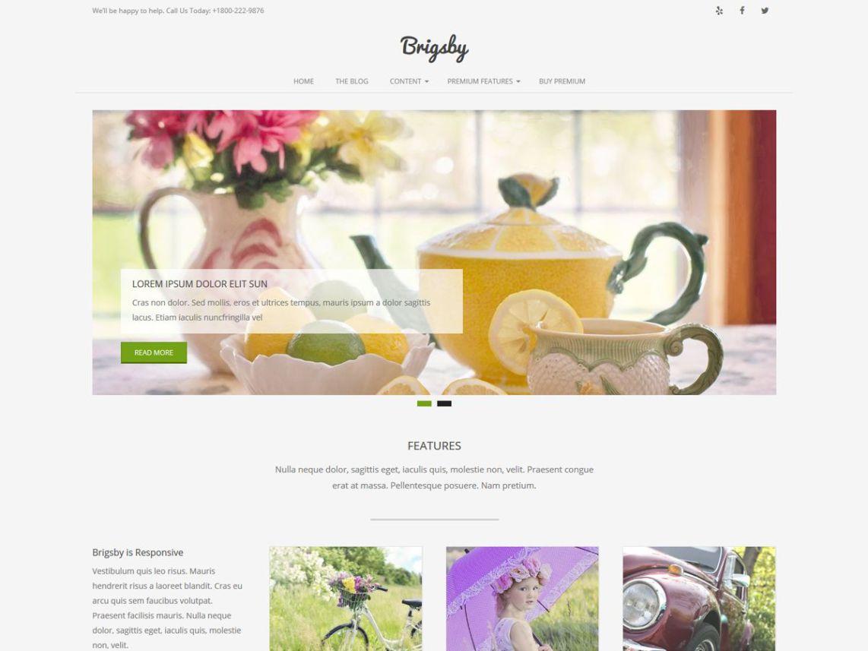 fwp-motyw-blogowy-brigsby